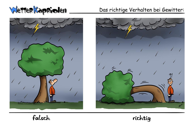 WetterKapriolen - Gewitterverhalten